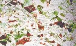 CLEAR, GREENS, RED FRACTURES by OCEANSIDE COMPATIBLE & SYSTEM 96